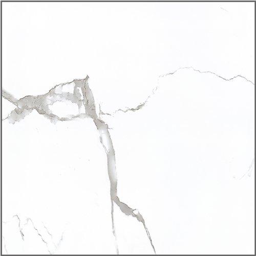 LONGFAVOR Inkjet Snow White Marble Series Super Market Porcelain Tiles RC66G0A81T Inkjet Snow White Marble Tiles image15