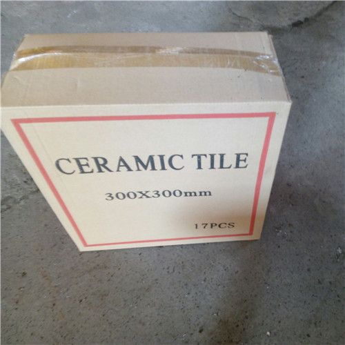 LONGFAVOR resistant 300x300mm Ceramic Floor Tile excellent decorative effect School-10